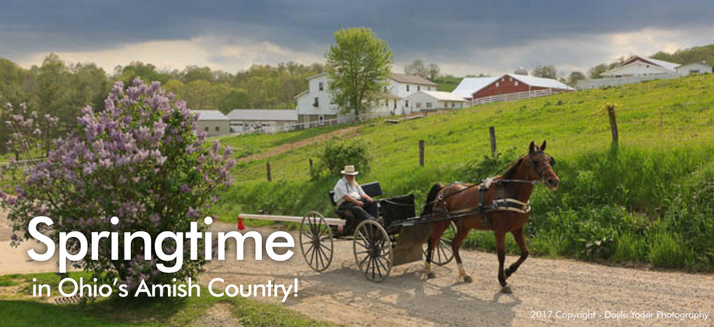 attractions in Ohio's Amish Country