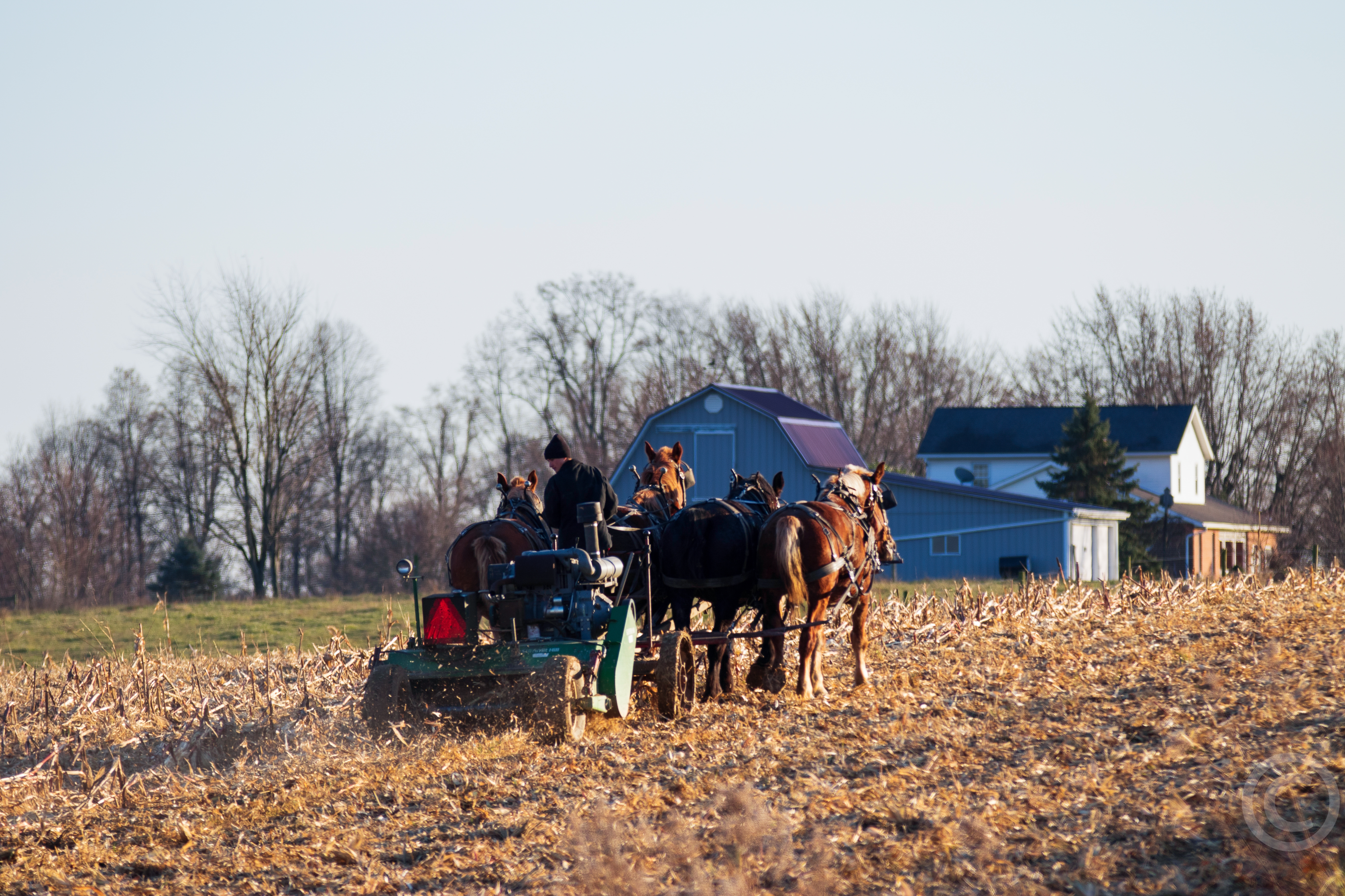 amish-country-insider-2.jpg