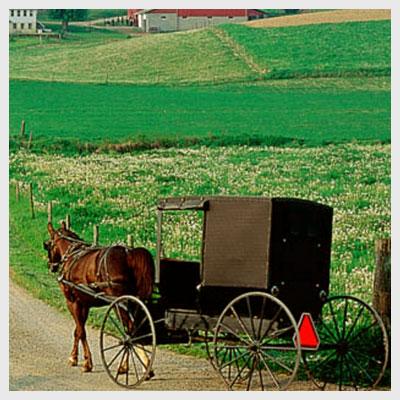 Tobe Amish