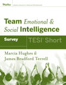 Team Emotional and Social Intelligence (TESI Short)