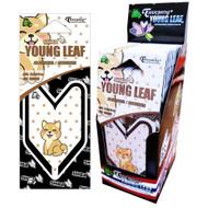 Treefrog Young Leaf JDM Squash 24 Packs, Cute Shiba
