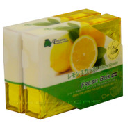 Treefrog Fresh Box Mini Lemon Squash Scent - YirehStore.com