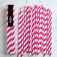 Lipstick Pink Stripe Paper Straws - Pack of 25