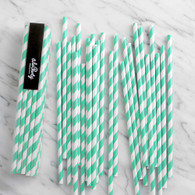 Aqua Mint Stripe Paper Straws - Pack of 25
