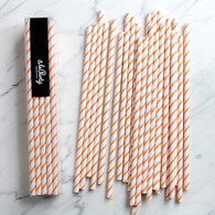 Orange Thin Stripe Paper Straws - Pack of 25