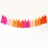 DIY Tassel Garland Kit - Bright
