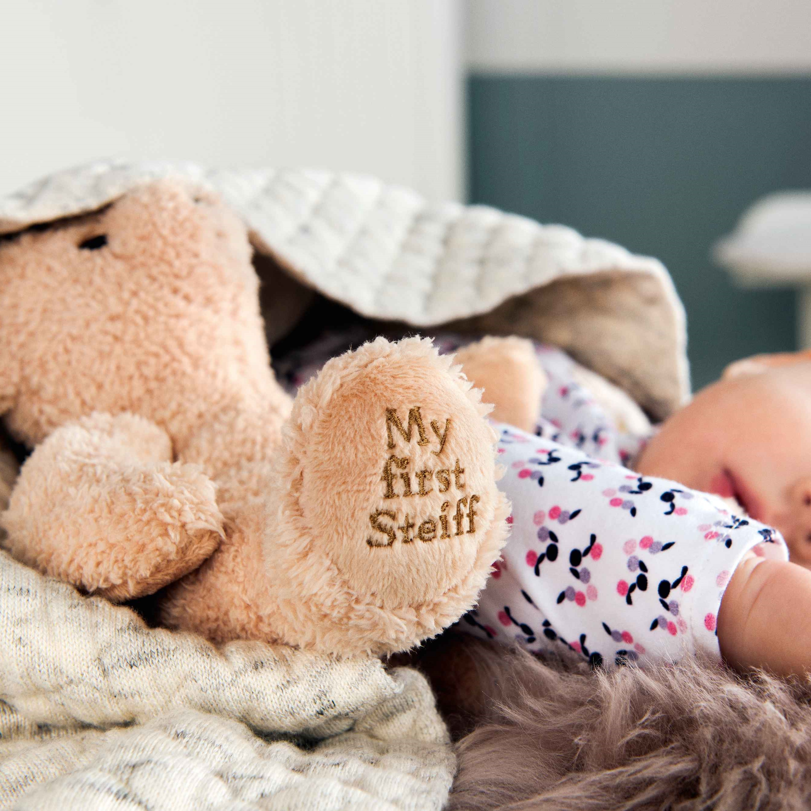 664120-baby-first-steiff-teddy.jpg