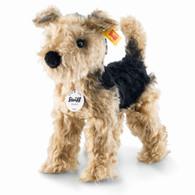 Terri Welsh Terrier EAN 033735