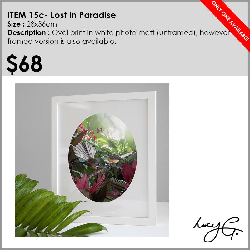 15c-lost-in-paradise.jpg