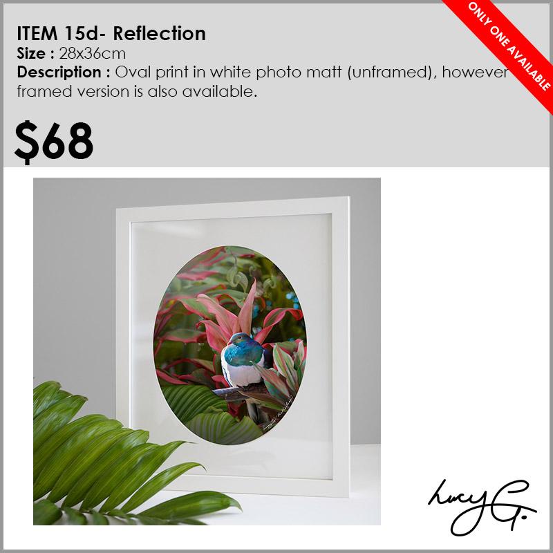 15d-reflection.jpg