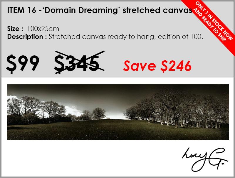 16-domain-dreaming.jpg
