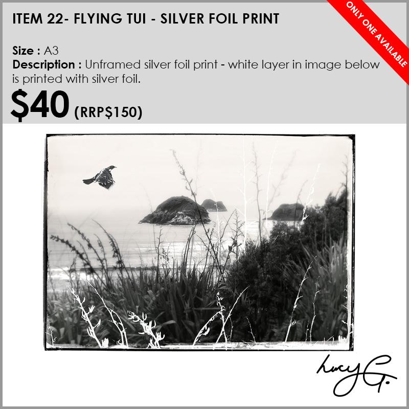 22-silver-foil-a3.jpg
