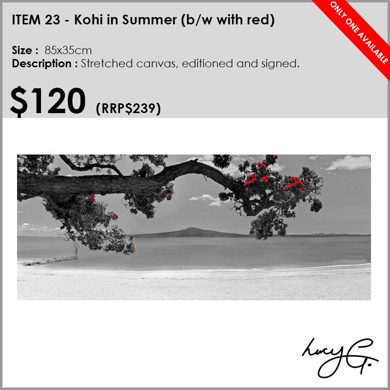 23-kohi-in-summer-bw.jpg