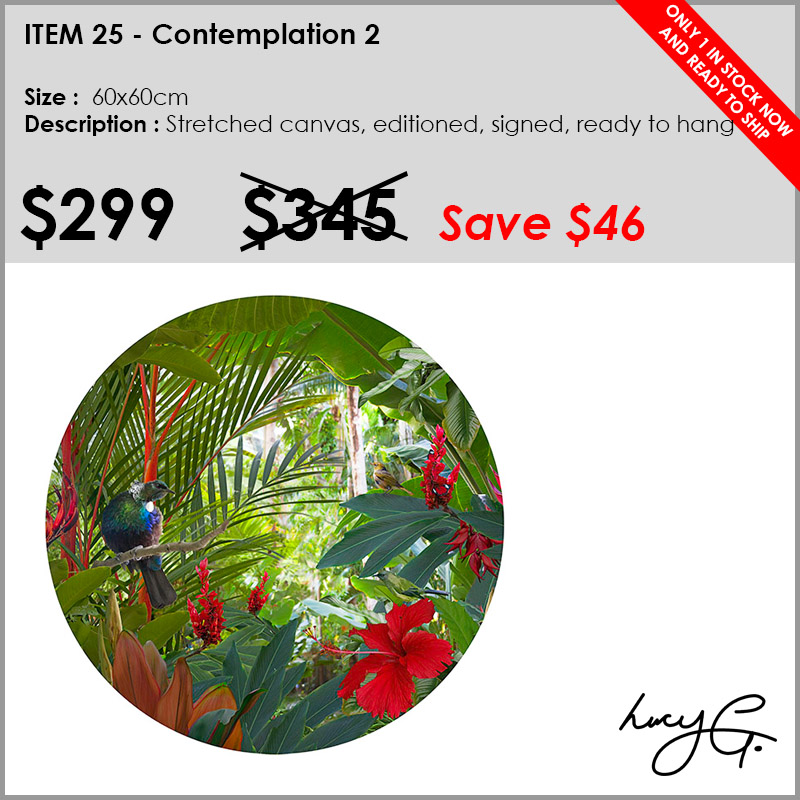 25-contemplation-2.jpg
