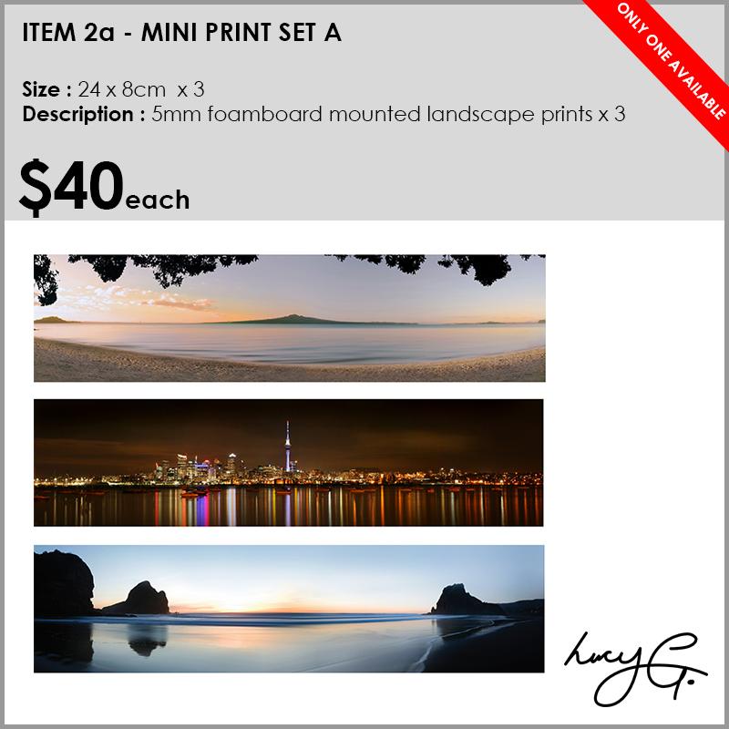 2a-mini-prints-nightime.jpg