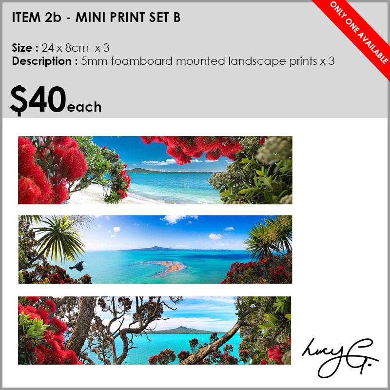 2b-mini-prints-rangis.jpg