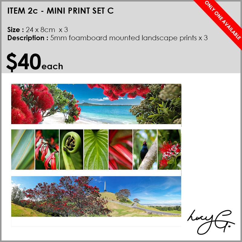 2c-mini-prints-collage.jpg