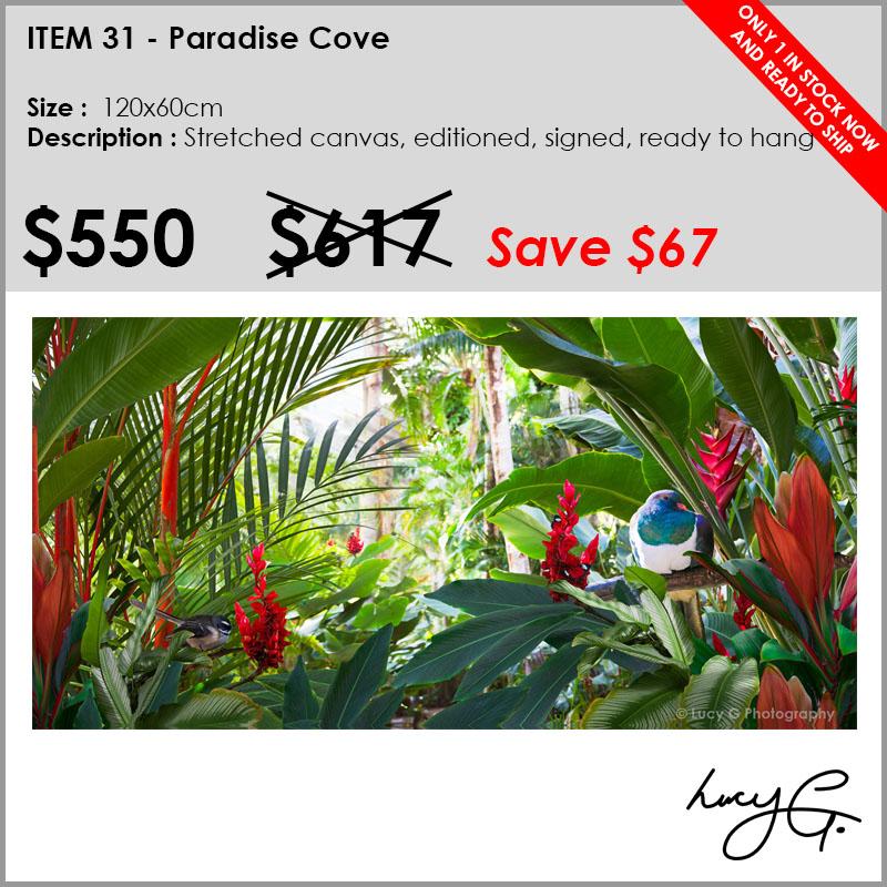 31-paradise-cove.jpg