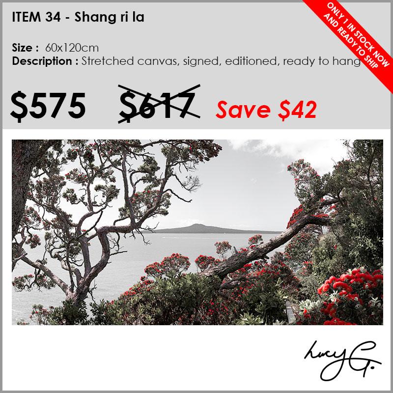 34-shang-ri-la-120x60.jpg