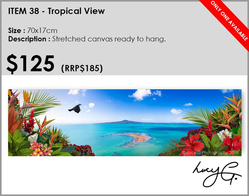 38-tropical-view.jpg
