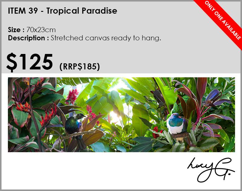 39-tropical-paradise.jpg