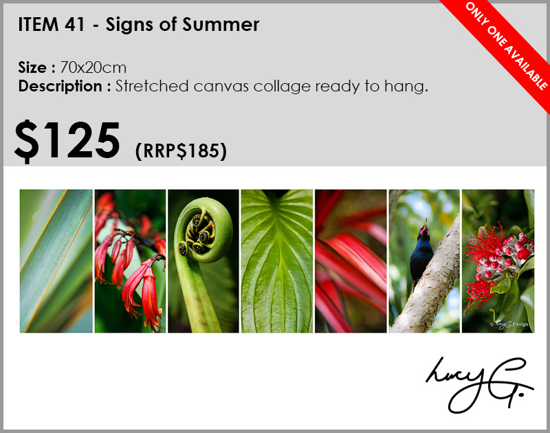 41-signs-of-summer-collage.jpg