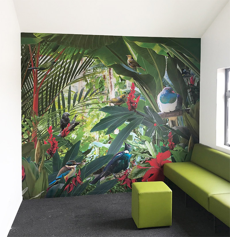 Tui, Kingfisher, NZ bird printed large photo vinyl wallpaper mural