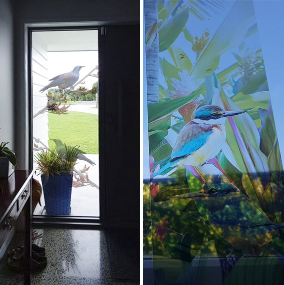 photo-art-printed-clear-window-film-lucy-g.jpg