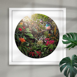 Temptation - NZ Wood Pigeon (Kereru) -round / circular, Kiwiana, New Zealand art print framed.