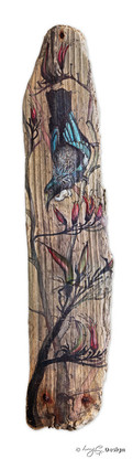Tui drawing / illustration on drift wood with NZ red flax, photo art print for sale.