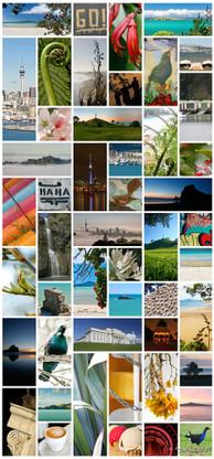 Auckland Kiwiana photo collage featuring Tui, Rangitoto, Piha, One Tree Hill, Skytower etc.