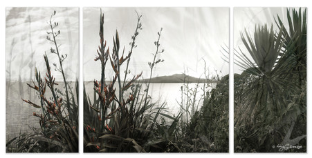 Rangitoto and red flax with cabbage trees, landscape photography  - print for sale