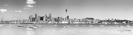 Auckland City landscape, New Zealand cityscape showing the city skyline -landscape print for sale.