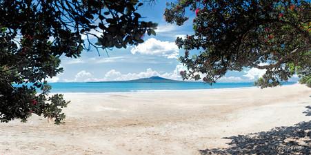 Takapuna iBeach, Rangitoto and Pohutukawa beach scene, Auckland, NZ - landscape photo print for sale.