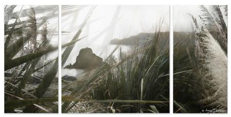 Lion Rock, Piha, Auckland, New Zealand - photo landscape print for sale.