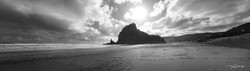 Piha Beach, West Coast, Auckland, NZ,  Lion Rock, beach & seascape - landscape photo print for sale.