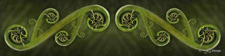 New Zealand fern frond photo art  / Maori Kowhaiwhai pattern - art print for sale.