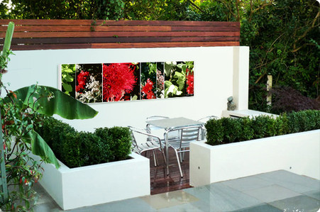 NZ Pohutukawa collage, outdoor wall art / outdoor artwork - art print for sale by Lucy G.