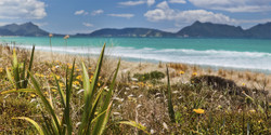 RUAKAKA BEACH 1' (to 1.4m) - Bream Bay, Northland, NZ, landscape photo (wall art / print)