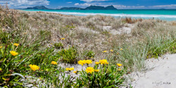 Ruakaka Beach view of Bream Head,  Hen and Chicken Islands, Mount Manaia and Sail Rock