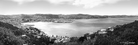 Wellington City, NZ, cliff view from Mt Victoria - landscape photo print for sale.
