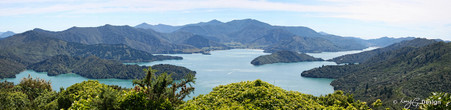 Queen Charlotte Sounds, Malborough Sounds, South Island, New Zealand - landscape photo print for sale.