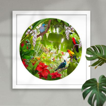 Tropical birds circular art framed
