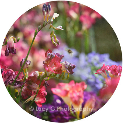Round wall decal - 'Spring Blooms 1'
