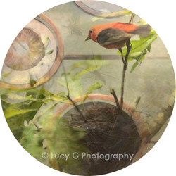 Round wall decal - ''The Botanist'