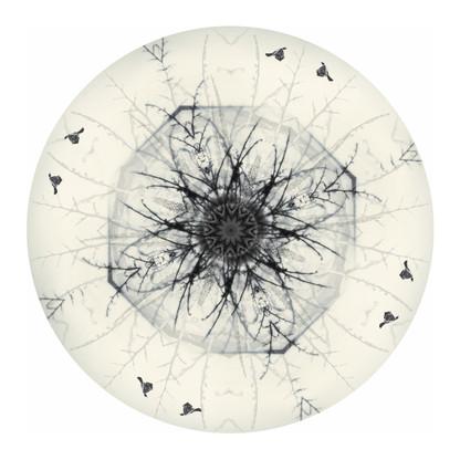 NZ Tui Mandela with flax - circular NZ art print / wall art for sale