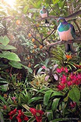 NZ Wood Pigeons (Kereru) in tropical garden setting - photo art print / wall art for sale