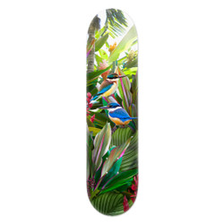 Tropical NZ Kingfisher' (Kotare)  printed art skatedeck / wall art by Lucy G