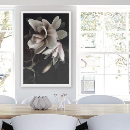 ''MAGNOLIA 1'' XL white box framed photo art flower print