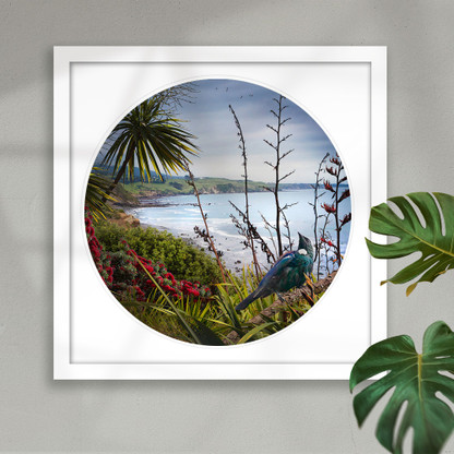 NZ Tui and flax circular art print in white frame